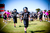 Vipers_Falcons_10-18-15-3
