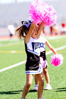 Vipers-Cheer_10-22-16-3