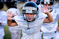 Vipers_Trojans_Scrimmage_8-24-15-64untitled